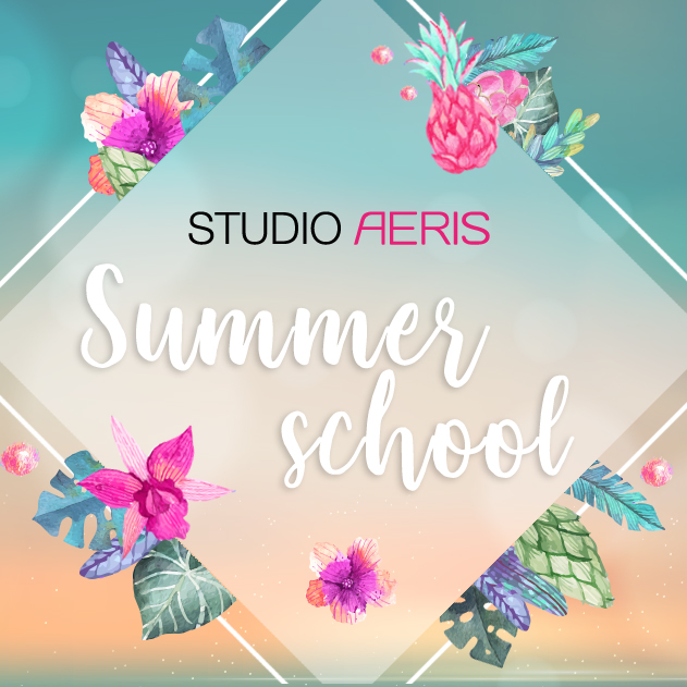 summer school paaldans lessen