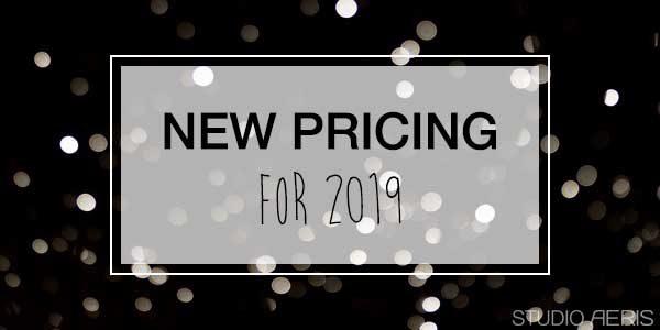 Nieuwe Prijzen paaldansen 2019